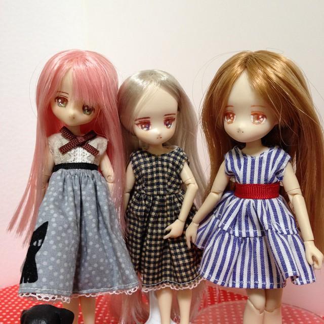 うちのピコニーモ三人娘。